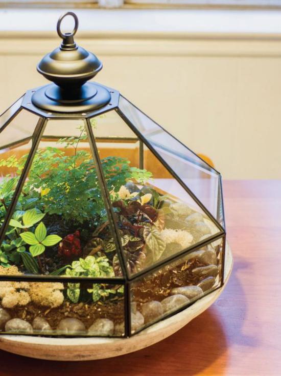 Minigarten im Glas ausgefallenes Glasgefäß tolles stilvolles Arrangement