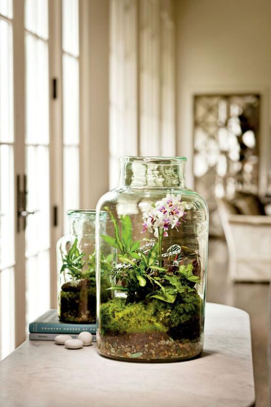 Minigarten im Glas blühende Zimmerpflanzen schmücken das Arrangement viel Grün