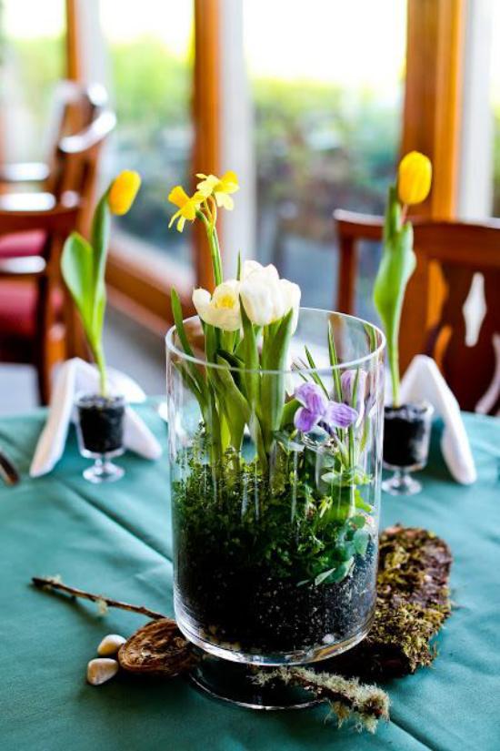Minigarten im Glas hoher Glasbehälter interessantes Arrangement mit Narzissen und Tulpen schöne Tischdekoration