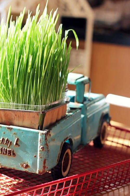 Ostergras selber säen alte Tradition lebt weiter im Glasgefäß auf einem Kinderauto
