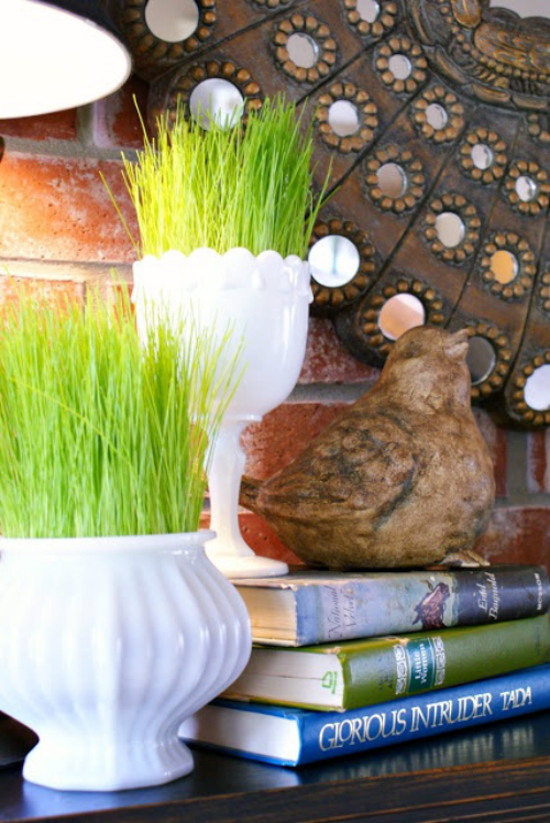 Ostergras selber säen hier in zwei weißen Keramikgefäßen schöne Raumdekoration
