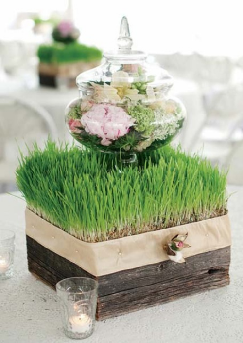 Ostergras selber säen im alten Holzkasten Retro Note Blüten im Glasgefäß