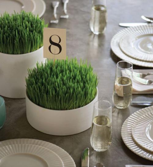 Ostergras selber säen im weißen runden Gefäß schöne Tischdeko zu Ostern