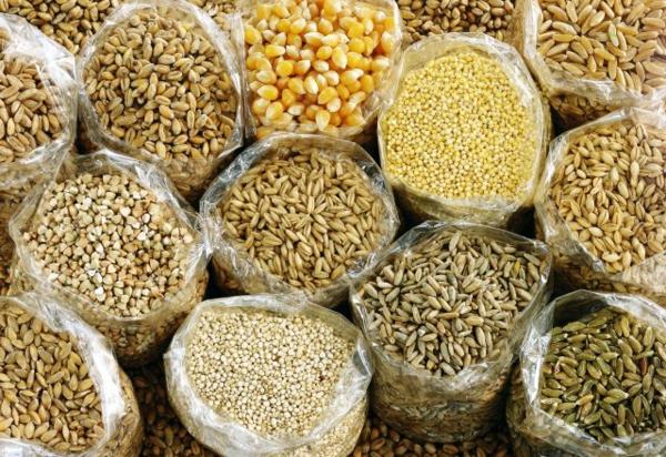 Superfood Freekeh Getreide Arten verschiedene Supernahrungsmittel