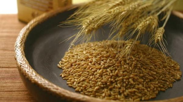 Superfood Freekeh Getreide Supernahrungsmittel
