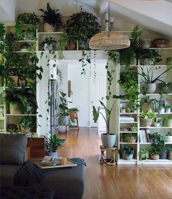 Trends 2021 in der Inneneinrichtung üppiges Grün zahlreiche Zimmerpflanzen Regale beste Raumdekoration