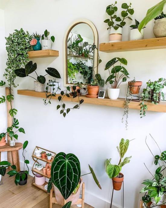Trends 2021 in der Inneneinrichtung offenes Regal viele Topfpflanzen üppiges Grün im Interieur