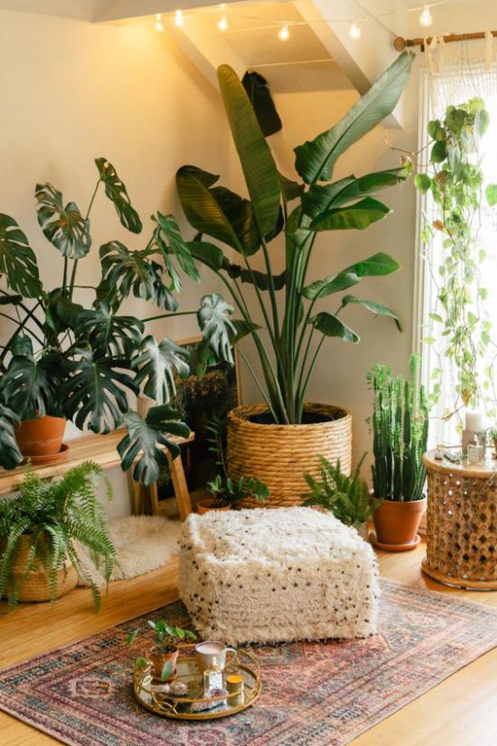 Trends 2021 in der Inneneinrichtung viele grüne Zimmerpflanzen exotische Blätter natürliche Materialien Teppich Hocker Körbe