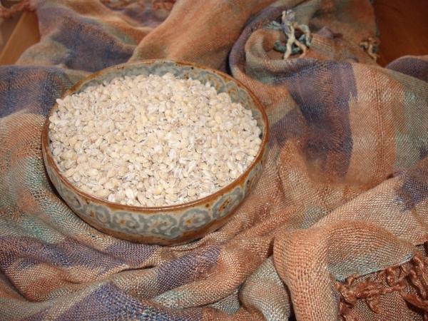 alte getreidesorten urgerste gesund