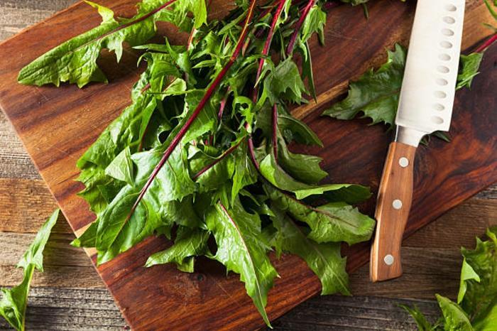 gesunde frühlingsrezepte löwenzahn salat