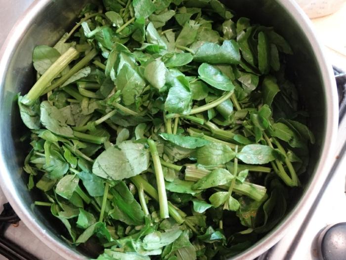 gesunde frühlingsrezepte salat mix