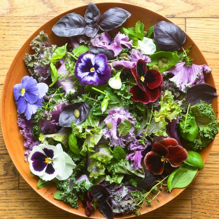 gesunde frühlingsrezepte salat stiefmütterchen