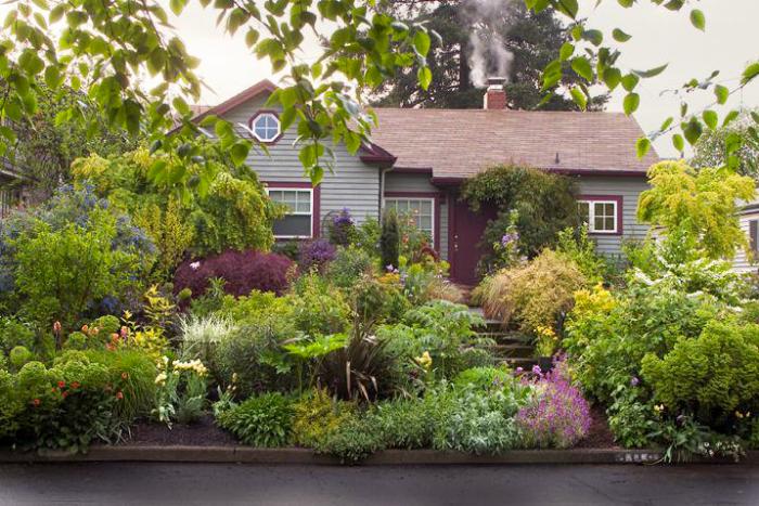 kleinen Garten gestalten vor dem Haus üppige Gartenpflanzen von der Straße gesehen