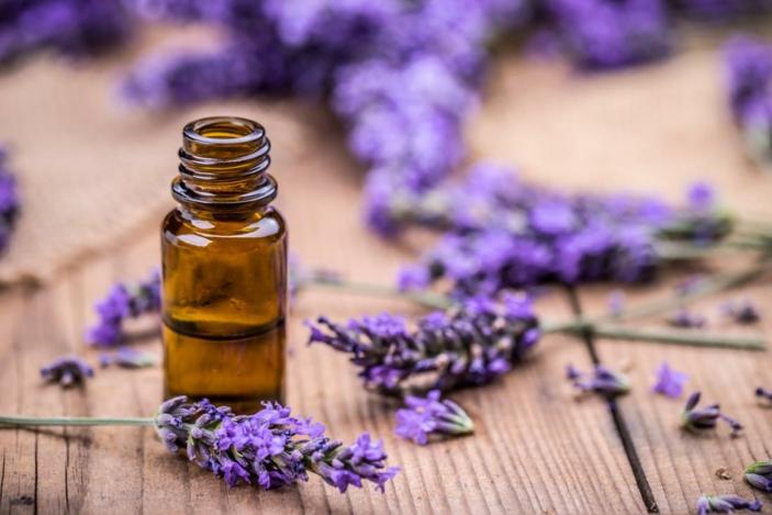 Kräuter für die Atemwege zitrone und lavendel