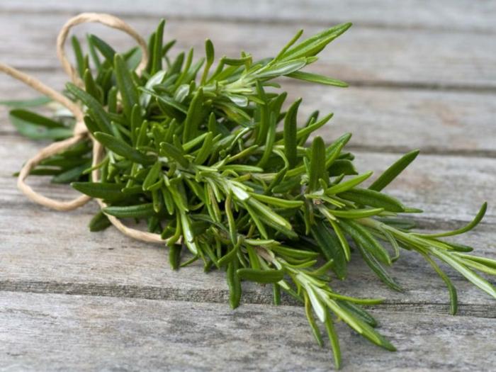 kräuterlexikon heilpflanzen rosmarin blutenwasser