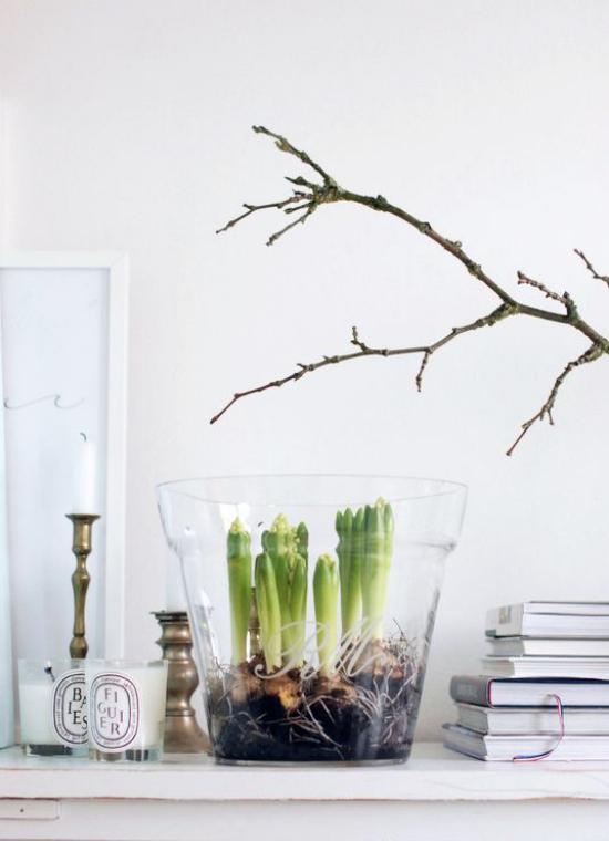 skandinavische Frühlingsdeko auf dem Kaminsims Hyazinthen im Glas Bücher Kerzen Zweige