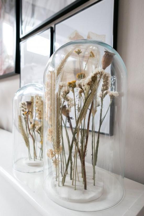 skandinavische Frühlingsdeko getrocknete Gräser unter Glashaube rustikales Arrangement