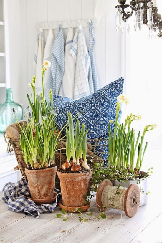skandinavische Frühlingsdeko rustikales Arrangement alte Blumentöpfe Frühlingsblumen Narzissen