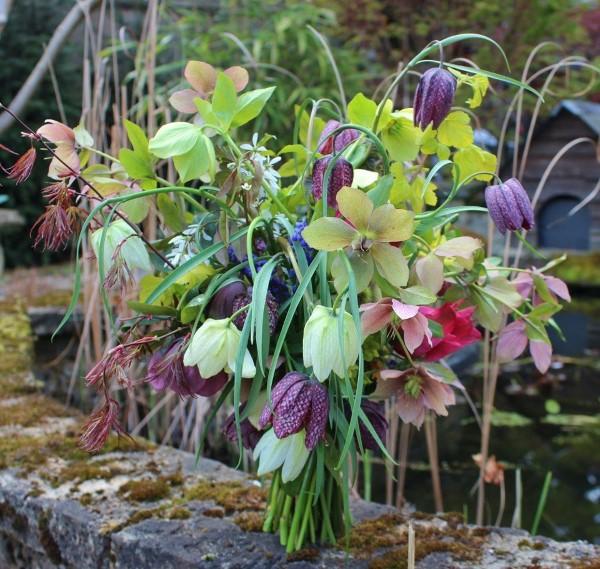 Die Schachbrettblume sorgt für Blütenzauber im Frühlingsgarten schnittblumen wildblumen