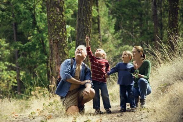 Frühling mit einem Osterspaziergang begrüßen – frische Ideen für die ganze Familie familie im wald ausflug