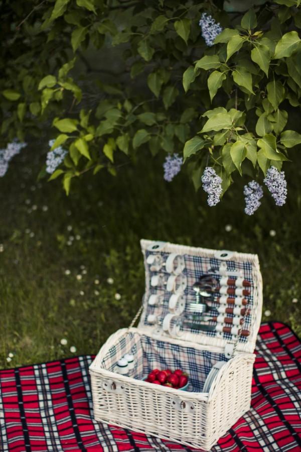 Frühling mit einem Osterspaziergang begrüßen – frische Ideen für die ganze Familie picknick gesund packen