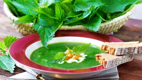 Gründonnerstag grüne Speisen traditionelle Rezepte grüne Brennnesselsuppe gern gegessen mit Toastbrot
