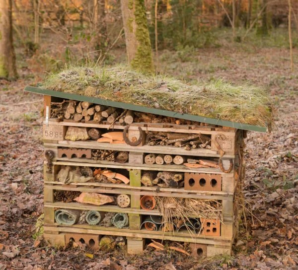 Insektenhotel basteln und den Frühlingsgarten mit freudigen Summen erfüllen paletten holz moos