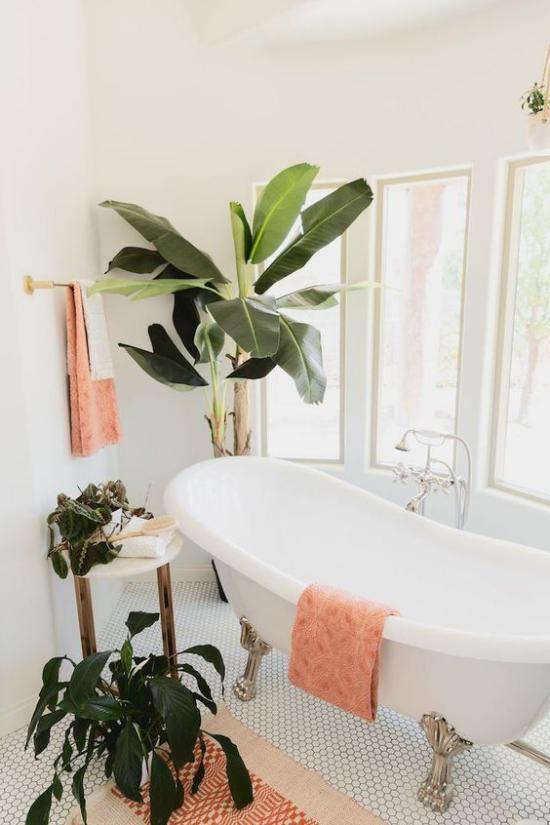 Tropische Deko im Bad Dschungel-Feeling passende Badpflanzen große üppige Blätter rosa Handtücher Badewanne mit Löwenfüßen