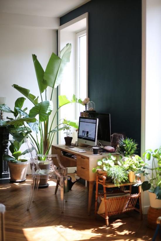 Tropische Deko im Home Office Dschungel-Feeling viele grüne Topfpflanzen Fenster kleiner Tisch PC Plastikstuhl