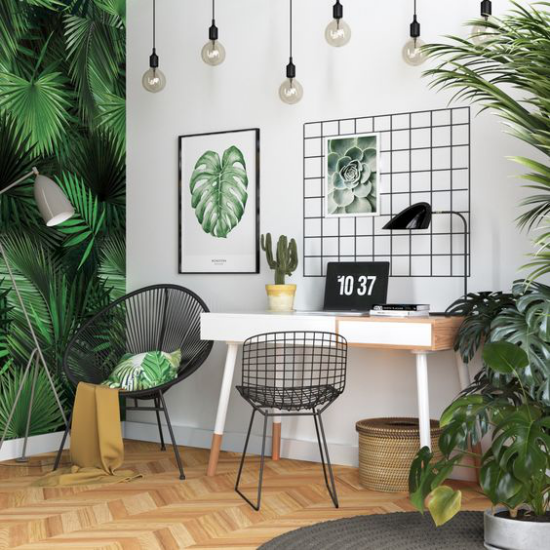 Tropische Deko im Home Office einfache Büroeinrichtung links Akzentwand rechts grüne Topfpflanzen Poster Foto von Sukkulenten