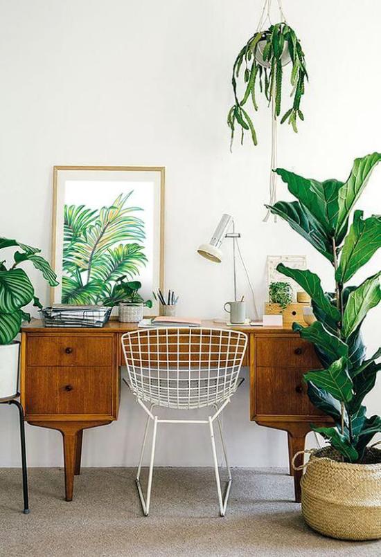 Tropische Deko im Home Office kleine Arbeitsecke Tisch weißer Stuhl aus Metall einfache Einrichtung grüne Zimmerpflanzen Bild Schreibtischlampe