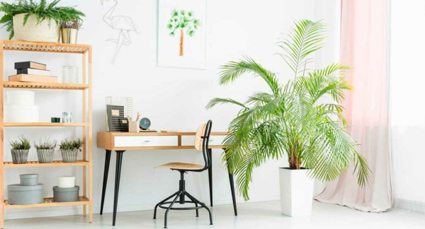 grünes und nachhaltiges Home Office einrichten Zimmerpflanzen