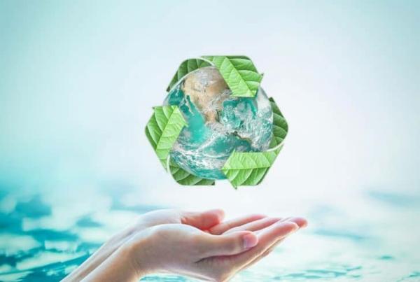 grünes und nachhaltiges Home Office einrichten umweltfreundliche Partner