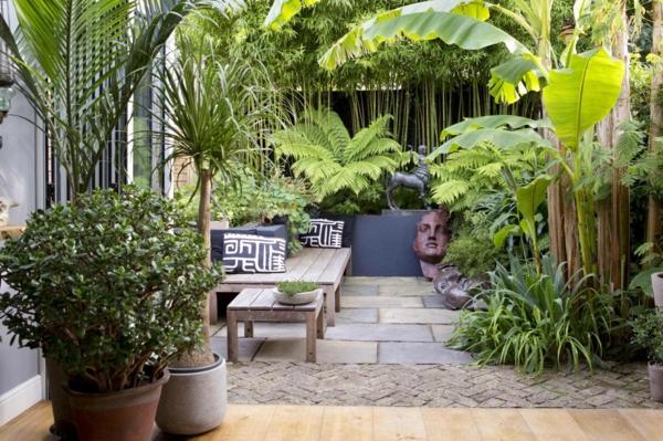Bambus Zimmerpflanze Phyllostachys aurea Zimmerpflanzen und Bambusarten