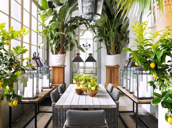 Bananenpflanze Pflege und Wissenswertes – so können Sie Exotik nach Hause bringen wintergarten idee große bananen