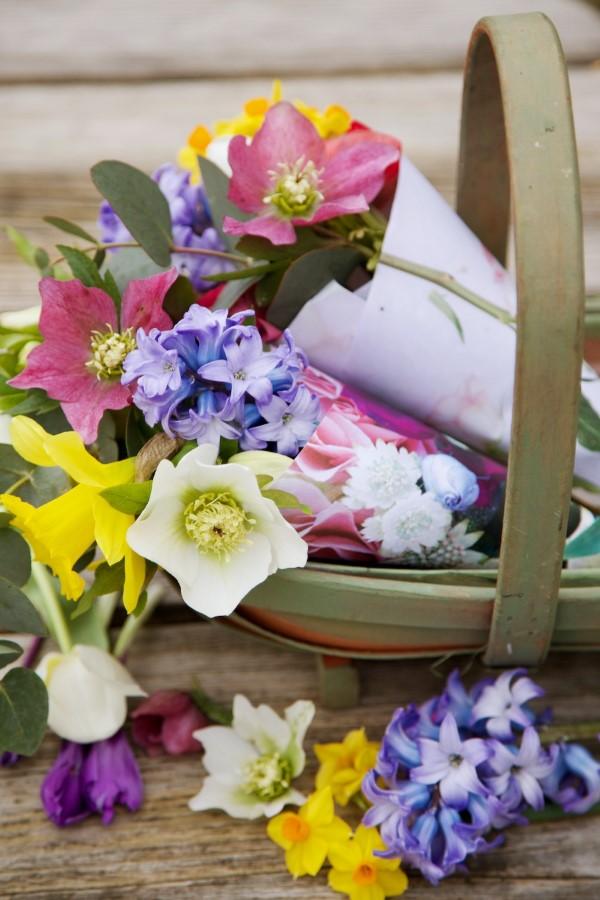 Blumenstrauß zum Muttertag selber binden – Die besten Blumenarten für Mama und Tipps schöne blumen zum muttertag
