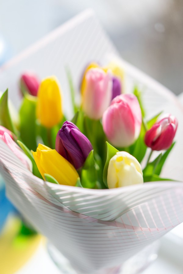 Blumenstrauß zum Muttertag selber binden – Die besten Blumenarten für Mama und Tipps tulpen strauß mutti