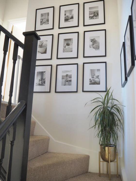 Fotowand im Treppenhaus Rasterhängung sechs Bilder schön gestaltet Blumentopf auf der Treppe