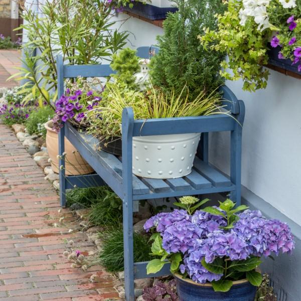 Gartenbank dekorieren – Ideen und Tipps für ein zauberhaftes Gartengefühl schöne blaue farbe bank deko pflanzen