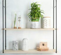 Was für eine Zimmerpflanze ist der Glücksbambus und wie sollten Sie ihn pflegen?