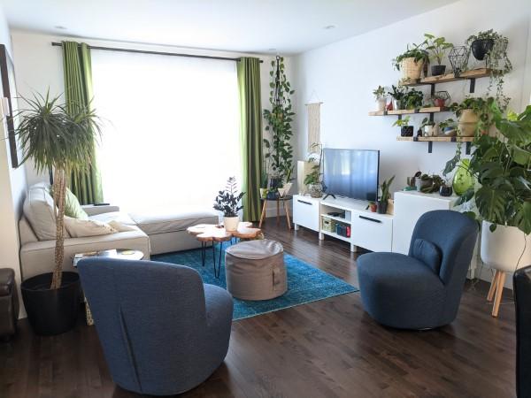 Gut schlafen durch luftreinigende Zimmerpflanzen! wohnzimmer blumen