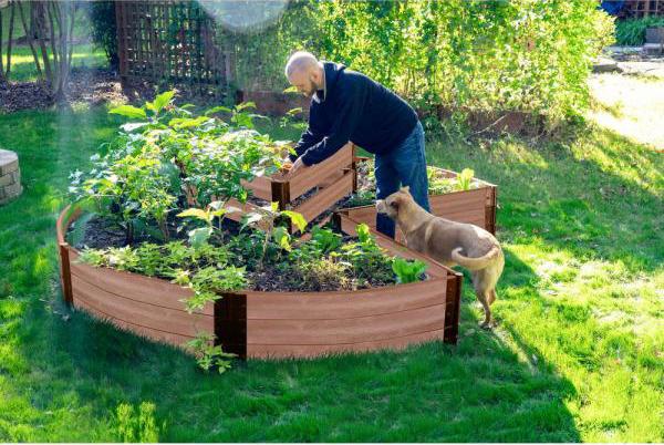Hochbeet in Schlüssellochform an einem sonnigen Platz im Garten runde Form junger Mann Hund