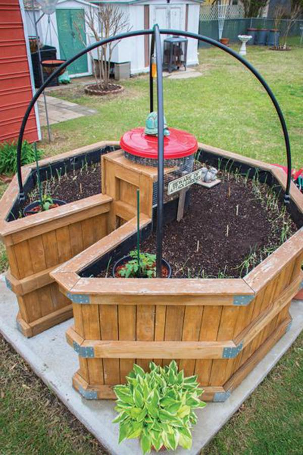 Hochbeet in Schlüssellochform runde Form so konzipiert die Gartenarbeit erleichtern