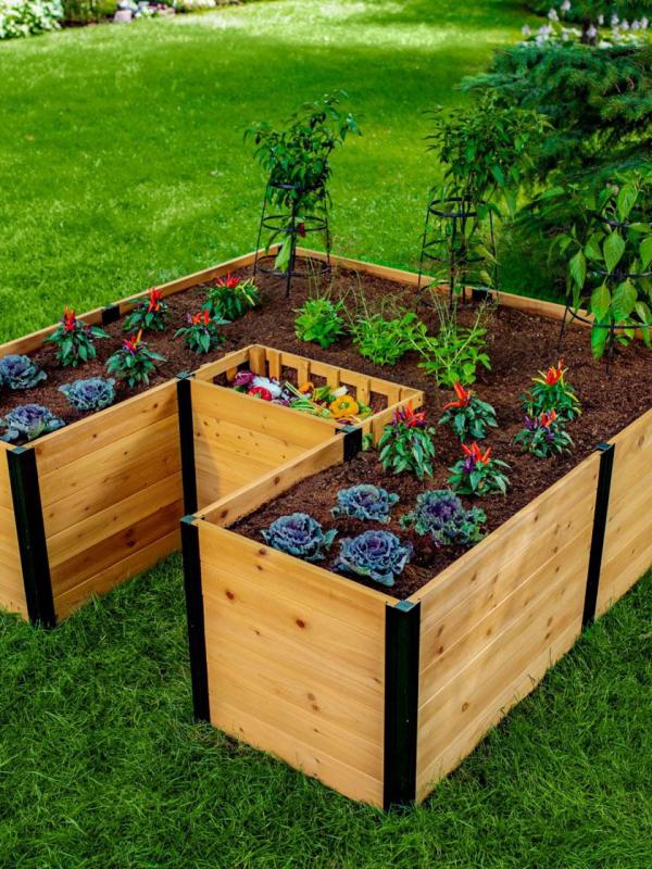 Hochbeet in Schlüssellochform viereckige Form Kompostkorb in der Mitte Kraut scharfe Paprika anbauen