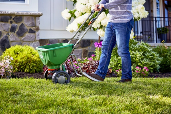 How-to-Take-Care-of-Your-Lawn-in-Spring-Season-pinterest