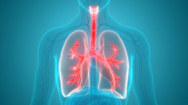 Lunge stärken Lungenkapazität verbessern gesunde Lunge