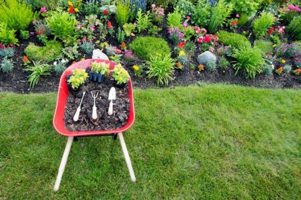 Rasenpflege im Frühjahr Gartentipps Gartenpflanzen