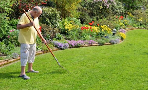 Rasenpflege im Frühjahr Gartentipps Harken