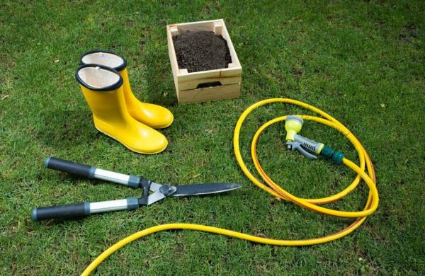 Rasenpflege im Frühjahr Gartentipps und Werkzeuge