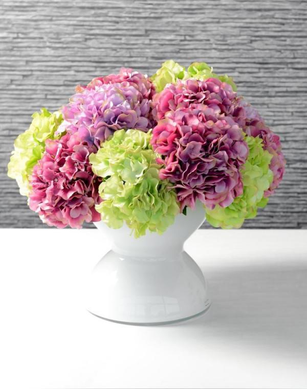 Rosa Hortensien Hortensienblüten verschiedene Farben in einer weißen Vase arrangiert